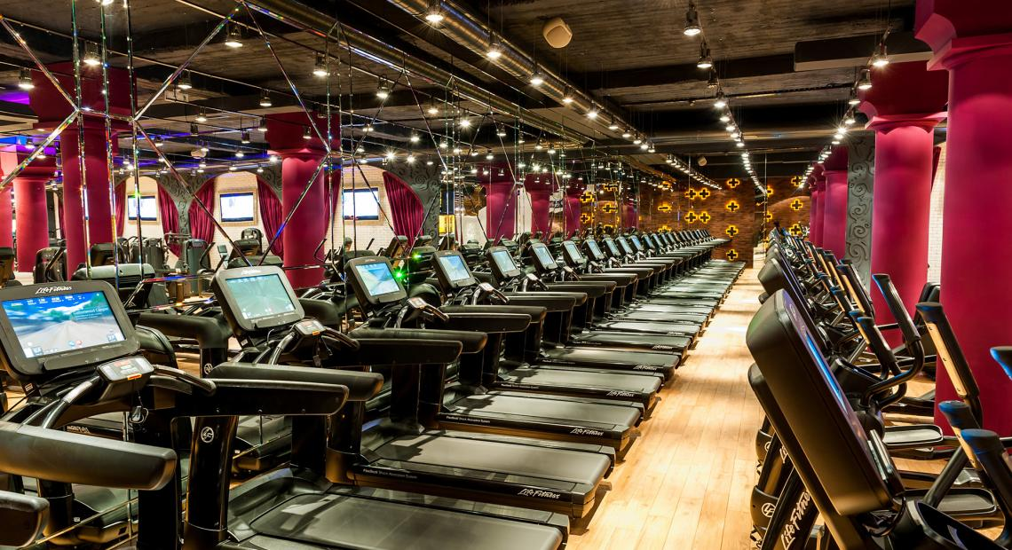 Pulse Fitness DELUXE