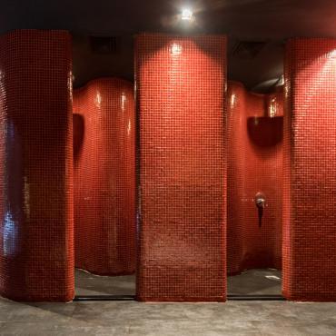 Арома душове с инфрачервена светлина