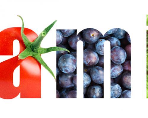 Витамините: Какви са ползите и как да си ги набавим?