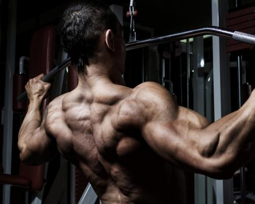 ТОП 5 упражнения за гръб